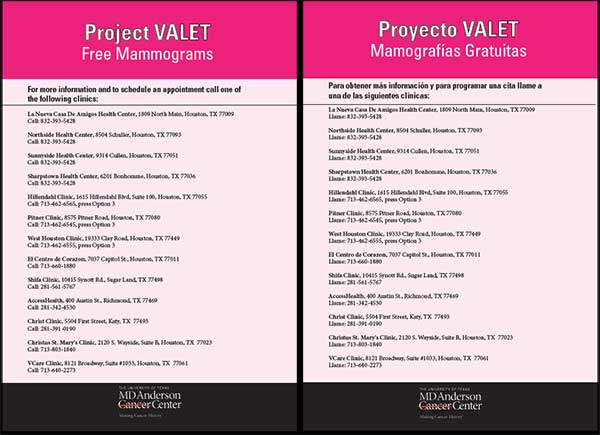Project VALET flyer